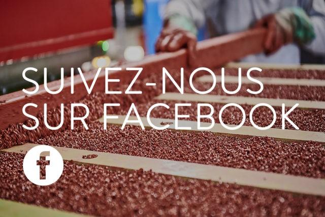 suivez nous sur facebook solygom